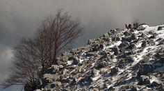 Winter hiking 8 - SONY DSC