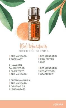 Red Mandarin essential oil provides a sweet, almost floral aroma. Diffuse these fresh Red Mandarin blends and love what you smell! Essential Oils For Headaches, Essential Oils Guide, Essential Oil Diffuser Blends, Essential Oil Uses, Doterra Diffuser, Doterra Essential Oils, Doterra Blends, Cedarwood Essential Oil, Essential Oil Perfume