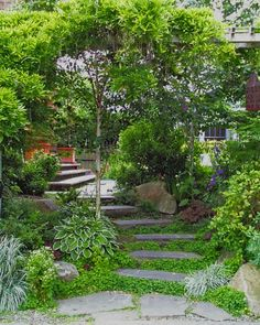 peaceful walk up the stairs.