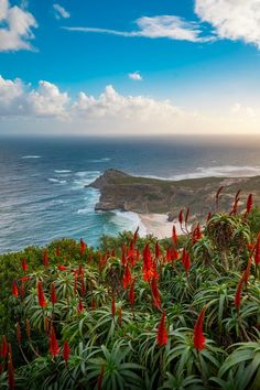 Geocaching, Nature Photos, Nature Images, Landscape Photographers, Beautiful Landscapes, South Africa, Travel Inspiration, The Good Place, Nature Photography