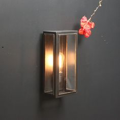 Shop Lighting Collective for Outdoor Wall Lights. This traditional style aged bronze exterior wall light is perfect for lighting up your front entrance, exterior pathways or your porch. Exterior Wall Light, Exterior Lighting, Outdoor Wall Lighting, Shop Lighting, Frosted Glass, Clear Glass, Glass Pool Fencing, Globe Decor, How To Make Lanterns