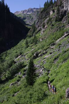 Wasatch hiking trail