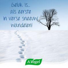 Zalig! Is er bij jou al veel sneeuw gevallen vandaag?! #geluk #sneeuw