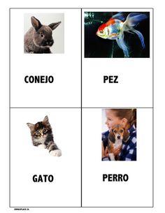 ideas -  Emma's Place Caregiver, Parents, Organization, Spanish, Animals, Ideas, Dog Cat, Dogs, Gatos