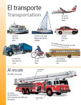 Transportation (El transporte) themed vocabulary -- Learn the Spanish vocabulary words for different methods of transportation with these handouts.    Get the printables from TeacherVision: http://www.teachervision.fen.com/spanish-language/printable/70418.html