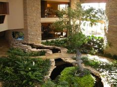 In Pictures: Homes With The Most Outrageous Amenities Waterfront views are accompanied by an indoor, tree-laden atrium and flowing koi-filled stream. Indoor Pond, Indoor Water Garden, Indoor Outdoor, Outdoor Living, Water Gardens, Aquarium Terrarium, Indoor Water Features, Atrium, Luxury Real Estate