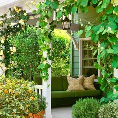 White climbing roses and leafy grapevines scramble up a porch's posts, while pots of kumquat and rosemary flank the steps at a cottage garden created by Santa Monica, California, designer Lisa Moseley.