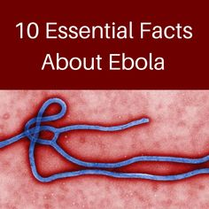 Ebola Information. People are in such a frenzy about this. Yes, it's scary, but we're in the U.S., not Africa. We're far better equipped to deal with it here. The general public is not at risk.