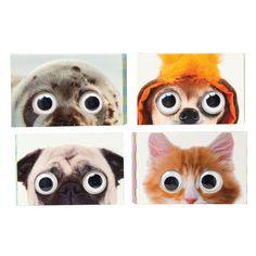 Google-Eye Notes Cute Pens, Cute Notes, School Supplies, Pugs, Super Cute, Kitty, Desk, Google, Board