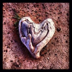 a Heart in nature God's Heart, I Love Heart, Happy Heart, Heart Art, Where The Heart Is, Heart Shaped Rocks, Collateral Beauty, Heart In Nature, Heart Songs