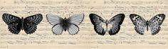 Vintage Butterfly Sheet Music Border ~ Álbum de imágenes para la inspiración (pág. 142)