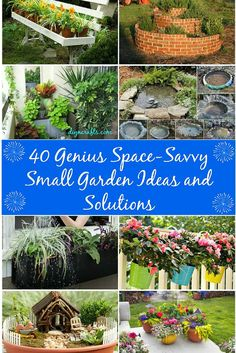 40 Genius Space-Savvy Small Garden Ideas and Solutions.   Having a small yard or outdoor living space does not mean that you can't have a great garden. There are a number of ways that you can turn your small space into a large garden area with little work and in most cases, with little money out of pocket.