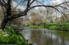 Rio Manzanares, El rio va dejando Madrid a la altura de Orcasitas. Esta parte está cerca del Parque Lineal del Manzanares