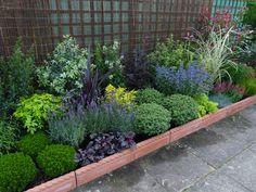 Garden Border Plants, Garden Shrubs, Shade Garden, Garden Beds, Garden Fun, Garden Edging, Easy Garden, Small Front Gardens, Back Gardens