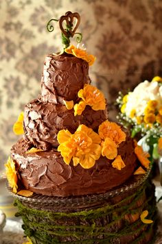 accompanied wedding cake Food Groups, Group Meals, Death By Chocolate, Chocolate Coffee, Bethany Joy, Cake Cover, Chocolate Pictures, Wedding Inspiration, Delicious Chocolate