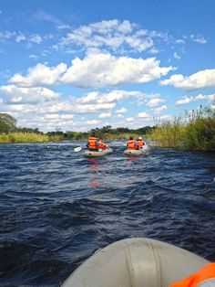 Zambia is a wilderness worth treading and today it's our consultants, Bev, Lauren and Benjamin, who take you there - from canoe trips to helicopter flips. Chutes Victoria, Victoria Falls, Canoe Trip, Canoeing, Bird Watching, Rafting, Wilderness, Places Ive Been, Cruise