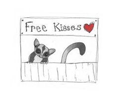 Free Kisses . . . | Sugar Glider