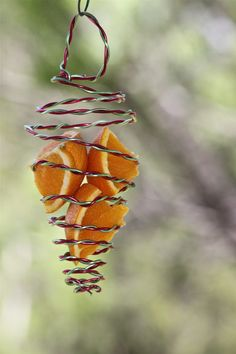 DIY fruit bird feeder: Use any wire but it will need to be strong enough to make sure it holds the fruit in and doesn't spring 'down and out'.  Floral wire is good. Use apples, oranges or strawberries.
