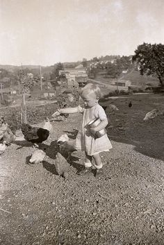 Hendersonville PA 1930's - Marion Feeds The Chickens. Hendersonville mine in background, along with the lamp shandy/doctor's office at upper right.
