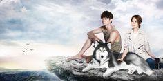 Watch Taiwan Drama 狼王子 第10集 Prince of Wolf Episode 10 Eng Sub Online