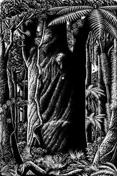 Image result for mervyn taylor printmaker Printmaking, Image, Printing, Graphics, Prints
