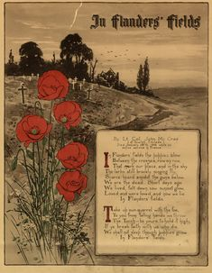 """In Flanders Fields"" a poem by Canadian Lieutenant Colonel John McCrae, was inspired by the death of a friend during the Second Battle of Ypres. The reason Veteran's Day is assocated with poppies. Second Battle Of Ypres, Remembrance Day Poppy, Remembrance Day Quotes, Armistice Day, Canadian History, Canadian Army, Canadian Soldiers, Anzac Day, Lest We Forget"