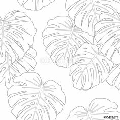 Vecteur : Mostera Leaves Seamless Pattern