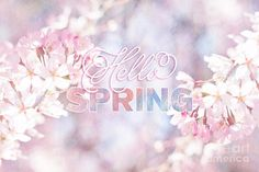 spring, flowers, and hello εικόνα