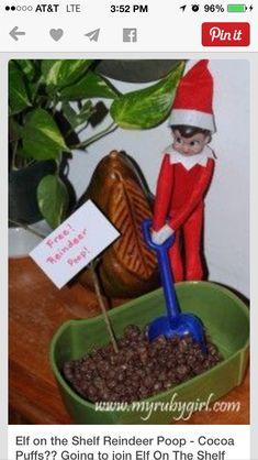 Reindeer poop! Use chocolate covered raisins. So cute!!