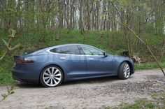 Tesla in the forest | Stock Photo | Colourbox on Colourbox