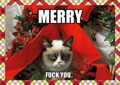 Merry Christmas Grumpy Cat. :)