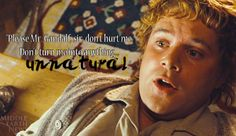 Here's a #MovieQuoteMonday  from Samwise Gamgee  in #LOTR  to help get you through your #MondayBlues !
