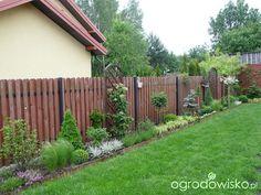 Metamorfozy ogrodowe - strona 74 - Forum ogrodnicze - Ogrodowisko