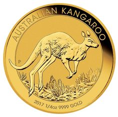 2017 1 oz Australian Gold Kangaroo Perth Mint Coin Fine BU (In Capsule) Gold And Silver Coins, Mint Gold, Bullion Coins, Silver Bullion, Elizabeth Ii, Perth, Red Kangaroo, Australia Kangaroo, Animaux