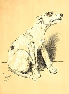 Cecil Aldin A Dog's Day Vintage Reproduction Photo Print  # 18 of 27 by A4Printsuk on Etsy