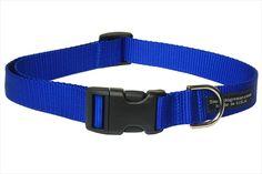 #Sassy Dog Wear SOLID BLUE SMALL Nylon Webbing Blue Dog #Collar