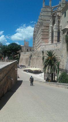 Parc de la mar-Palma ciutat (Mallorca)