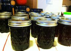 Super Easy Jams and Jellies with two Recipes - American Preppers Network