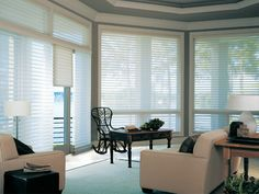 These are cool: Hunter Douglas silouettes