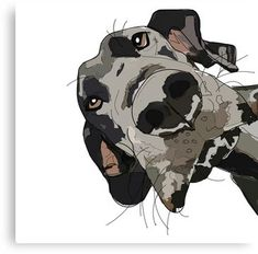 """Determine additional info on """"great dane puppies"""". Browse through our web site. 'Great Dane ' Canvas Print by sketchandpaws Source by angiehoymbali Cute Dog Costumes, Dog Halloween Costumes, Perros Yorkshire Terrier, I Love Dogs, Cute Dogs, Big Dogs, Scary Movie Characters, Dog Artwork, Great Dane Puppy"""