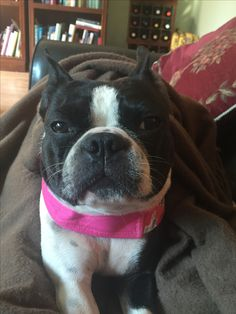 Who says I look grumpy?