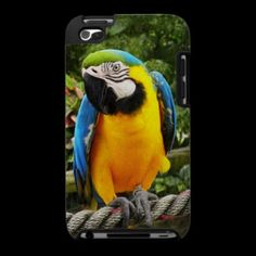 #Exotic #Macaw #Parrot #Ipod Touch 4g #Cases © #Bluedarkat - on #Zazzle!