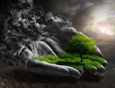 Drzewo, Dłonie, Grafika