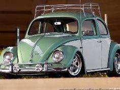roof racked bug