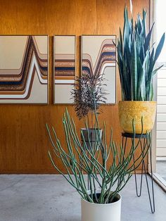 Wood Panel Walls | Mid Century Modern