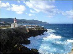 Taref _ Algérie