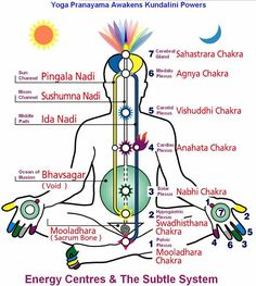 Kundali energy systems   and info on The Six Perfections  1. Giving  2. Morality  3. Patience   4. Joyful effort  5. Meditative concentration  6. Wisdom
