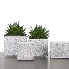 Viereckiges Pflanzgefäß aus Keramik für Zimmerpflanzen #urbanjungle