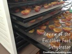 Review of the Excaliber 9-tray food dehydrator and its many uses: fruit drying, making jerky, raising bread, yogurt making, and more.