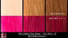Manic Panic Japan - Hair Coloration / Decoloration Guide- Cleo Rose MC11046